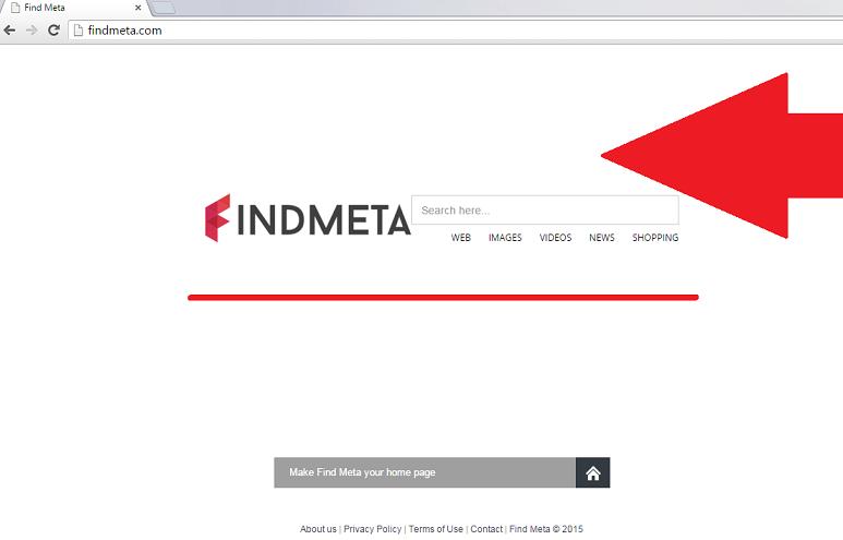 findmeta-com