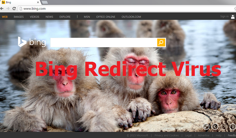 Bing Redirect virus-
