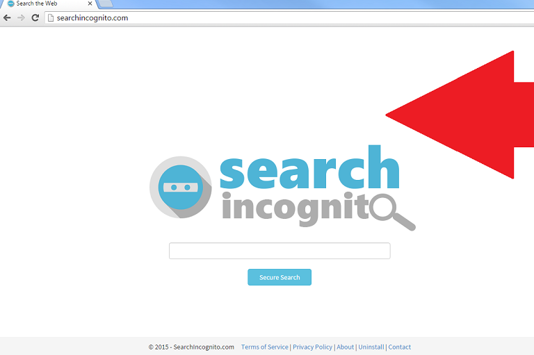 Searchincognito.com-