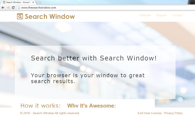 Search Window-