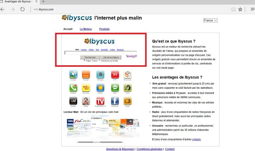 Info.ibyscus.com-