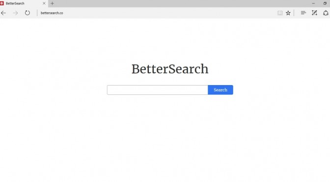 Bettersearch.co-_.jpg