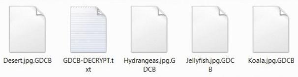 GDCB_file_extension_virus-_.jpg