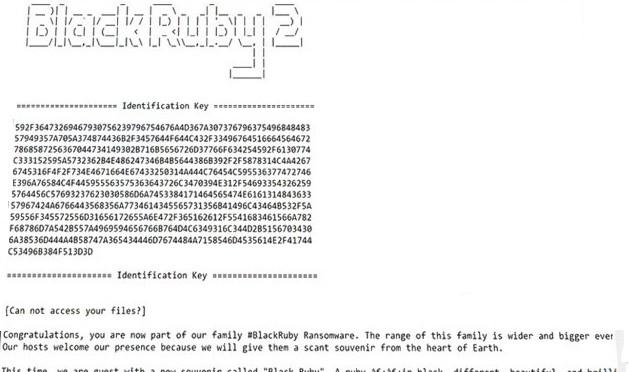 BlackRuby2_Ransomware-.jpg