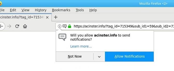 Acinster.info-_.jpg