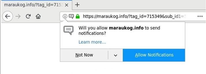 Maraukog.info-_.jpg