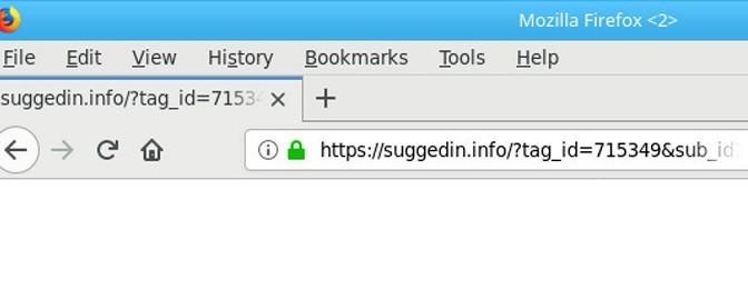 Suggedin.info-_.jpg