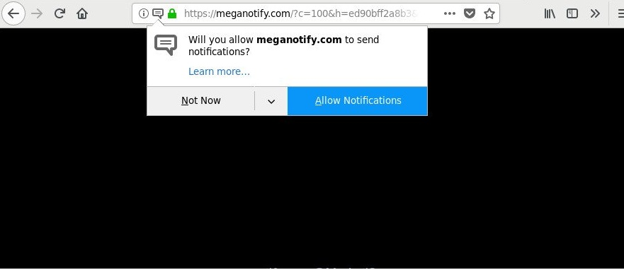 Meganotify.com-_.jpg