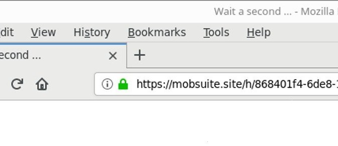 Mobsuite.site-_.jpg