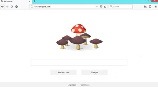 Qogotte.com-_.jpg