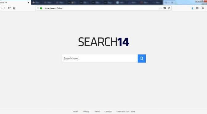 Search14.co-_.jpg