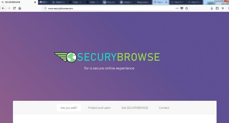 Securybrowse.com-_.jpg