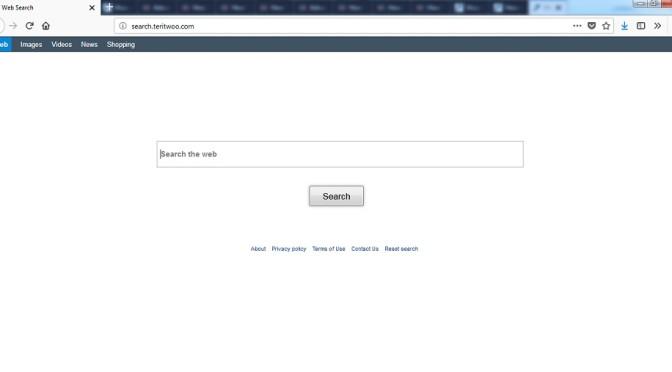 Search.teritwoo_.com-_.jpg