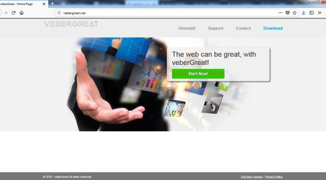 VeberGreat-.jpg