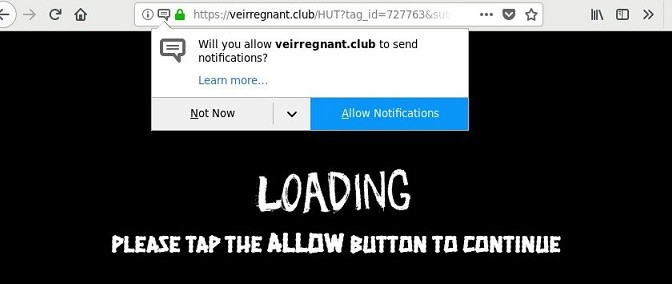 Veirregnant.club-_.jpg
