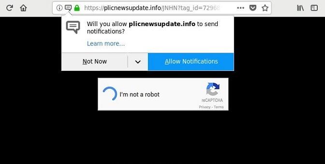 Plicnewsupdate.info-_.jpg