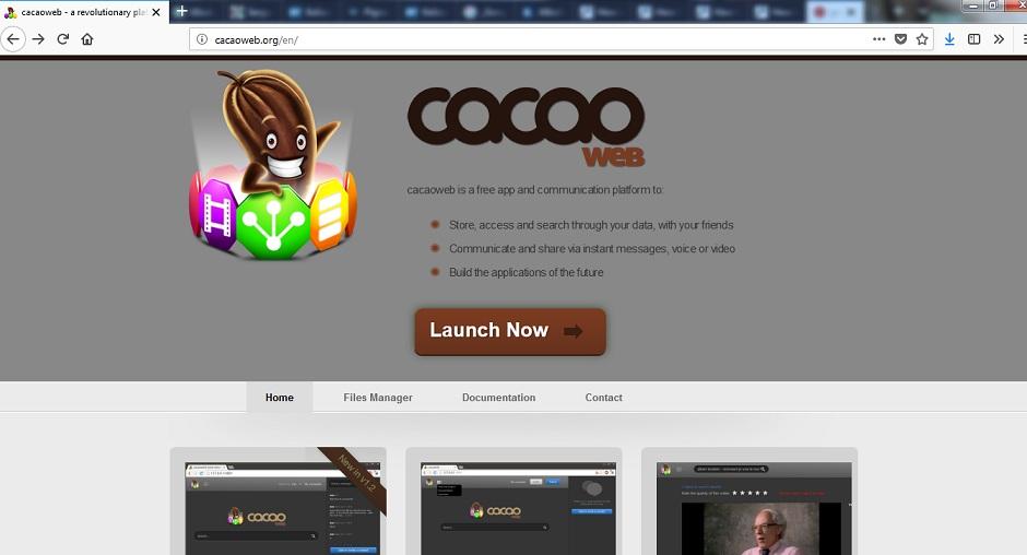 Cacaoweb.org-_.jpg