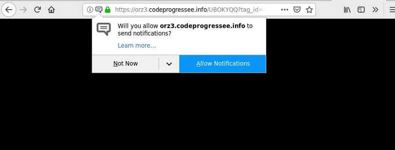 Codeprogressee.info-_.jpg