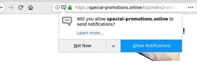 Special-promotion.online-_.jpg