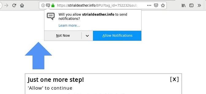 Strialdeather.info-_.jpg