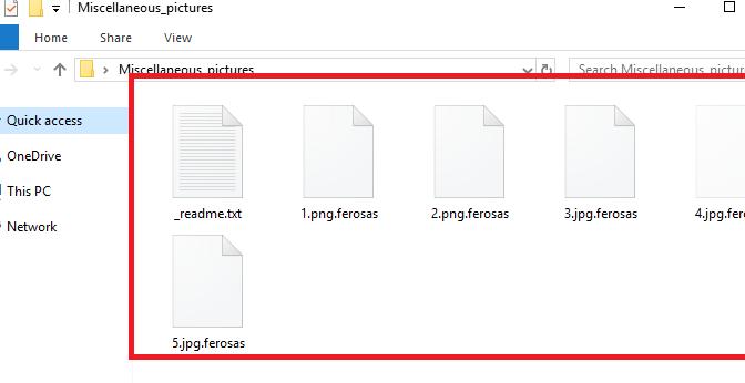 Ferosas_ransomware_virus.png