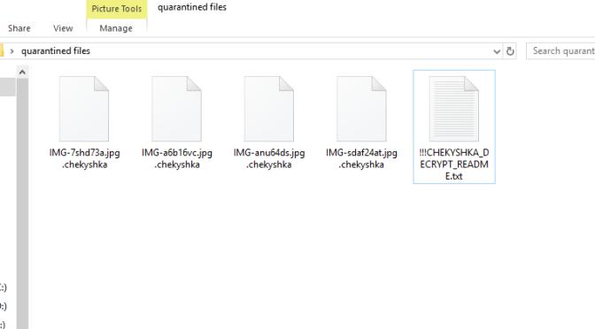 Chekyshka_ransomware5.png